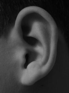 ear-1196468-639x852